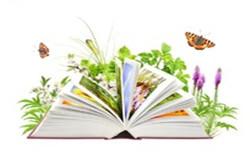 2017英语毕业论文格式要求论文