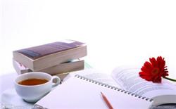 行政管理专业论文