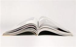 财务管理论文