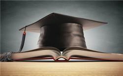 学生职业学校论文